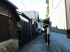 Ph20111129b
