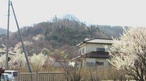 Hanamiyama200905